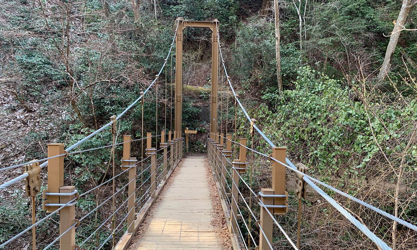 四号路の最大の魅力みやま橋(一本橋)です!橋からのぞいてみるといい写真が取れますよ!!
